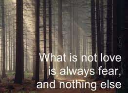 fear and love 1